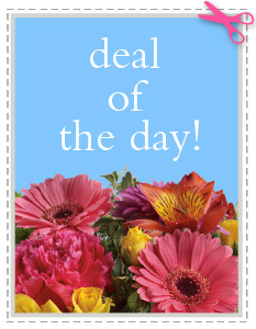 Deal of the Day in Elmer NJ, A Cheerful Floral